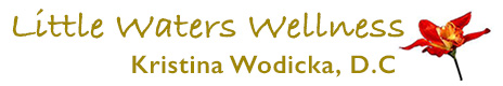 Kristina Wodicka, D.C. Logo